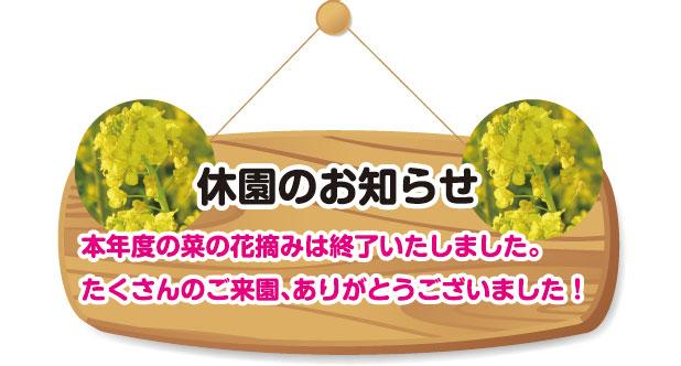 菜の花休園のお知らせ