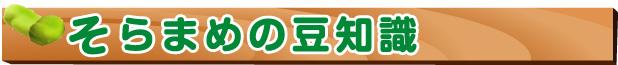 空豆-空豆の豆知識
